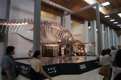 中には巨大な恐竜化石が!