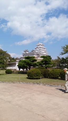 放送内ではありませんが、白くなった姫路城
