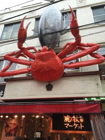 蟹と魚がDK!