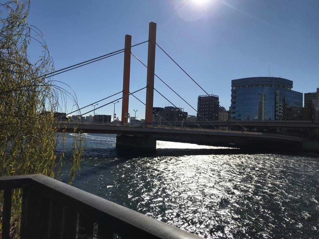南が松たか子とバッタリ会った橋